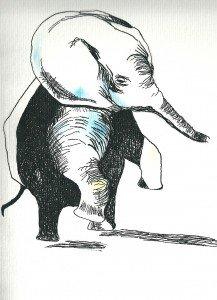 Les portraits animaliers dans Les animaliers lelephanteau-temeraire-217x300