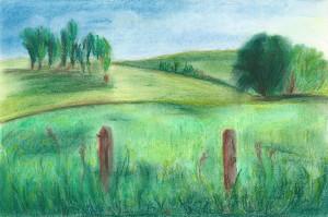 Paysage du Limousin (d'après une photo)